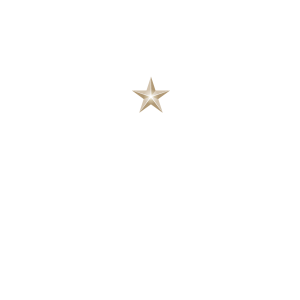 Hassell_logo